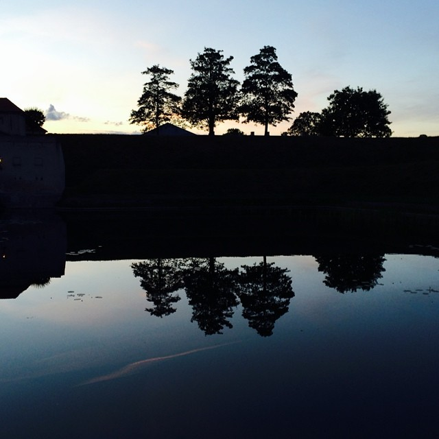 Last of the evening #light over #kastellet #copenhagen - #reflections #silhouette #trees #water #sunset