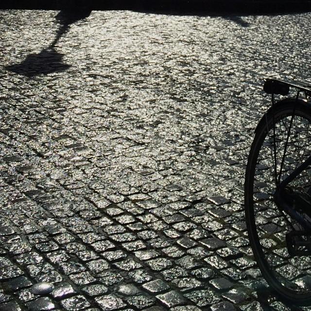 #wet #cobbles in #nytorv #copenhagen #blackandwhite #rain #sunshine #vscocam