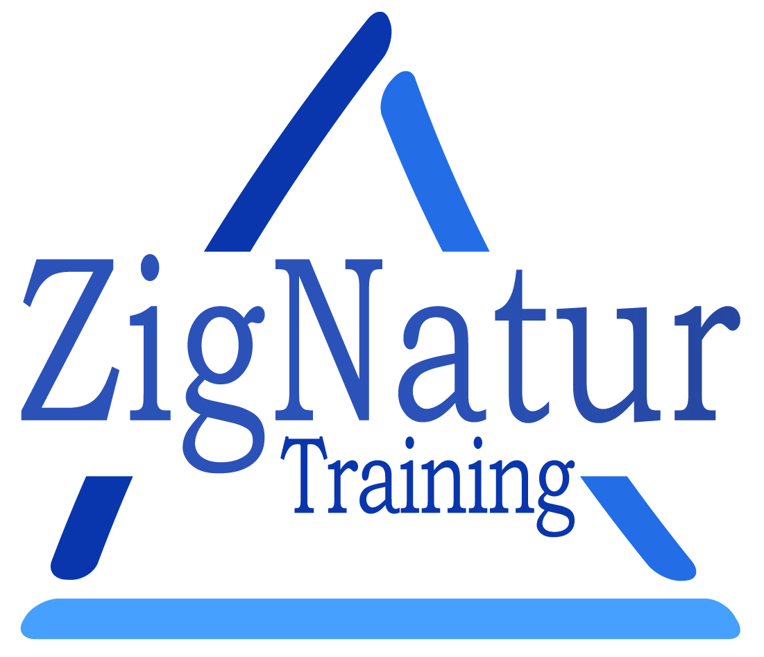 Zig-Defence Logo Blue tøj.jpg