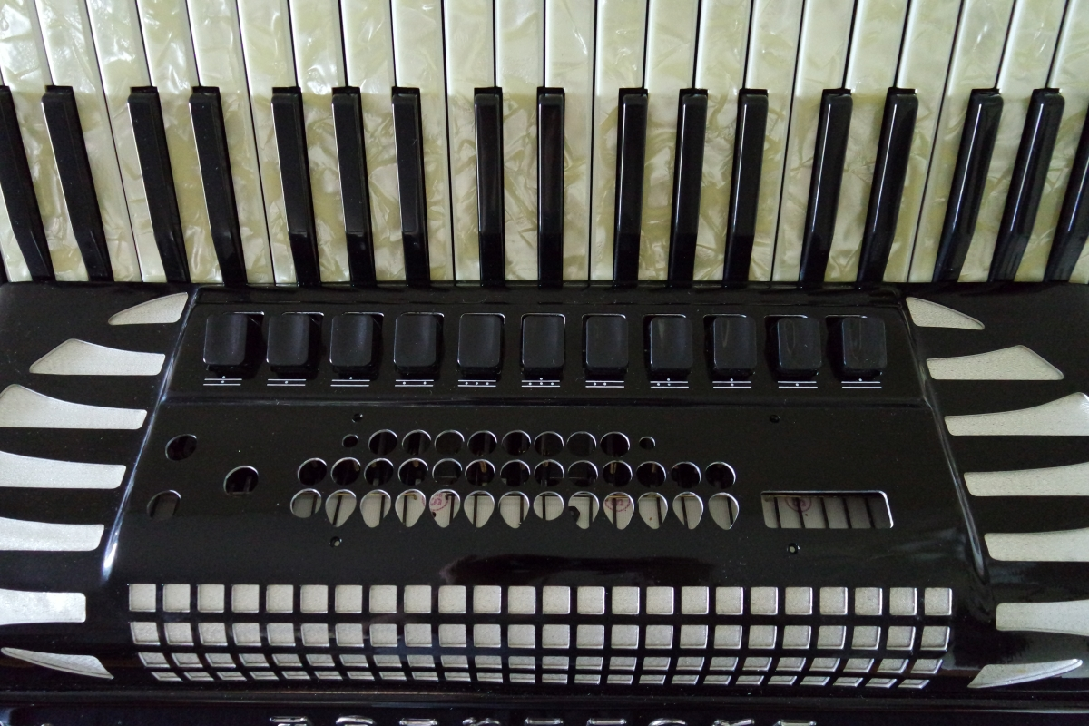 excelsior_accordion2.JPG