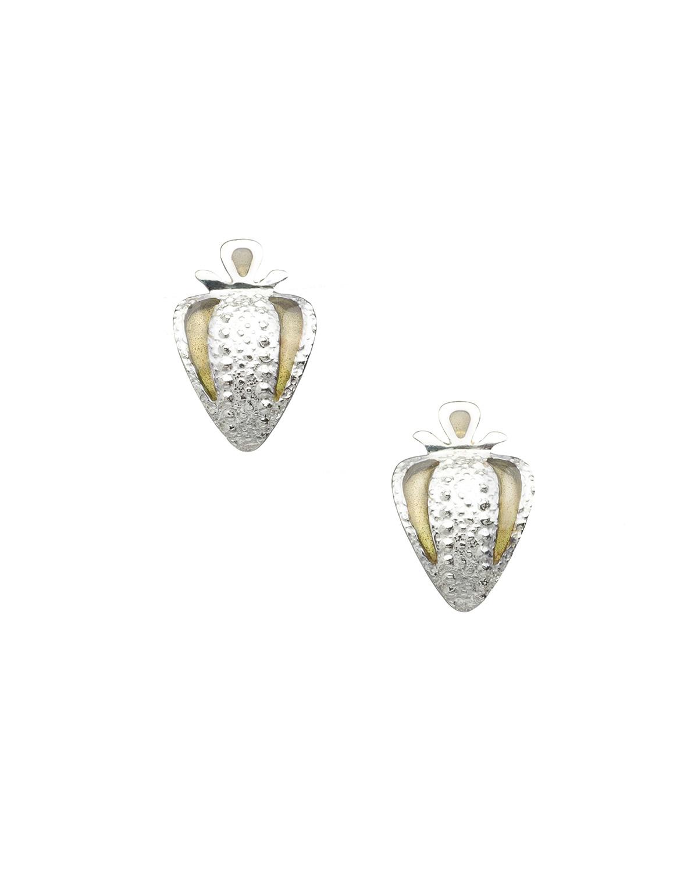 2017-03-Mary-Lynn-Podiluk-Argot-Earrings-S24a-Sim.jpg