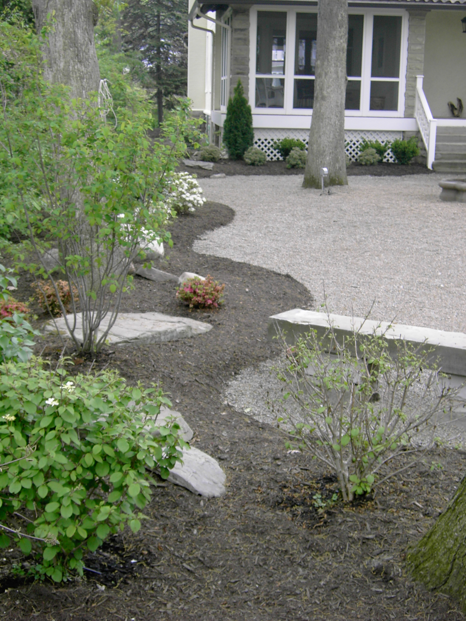 Plantings (1).jpg