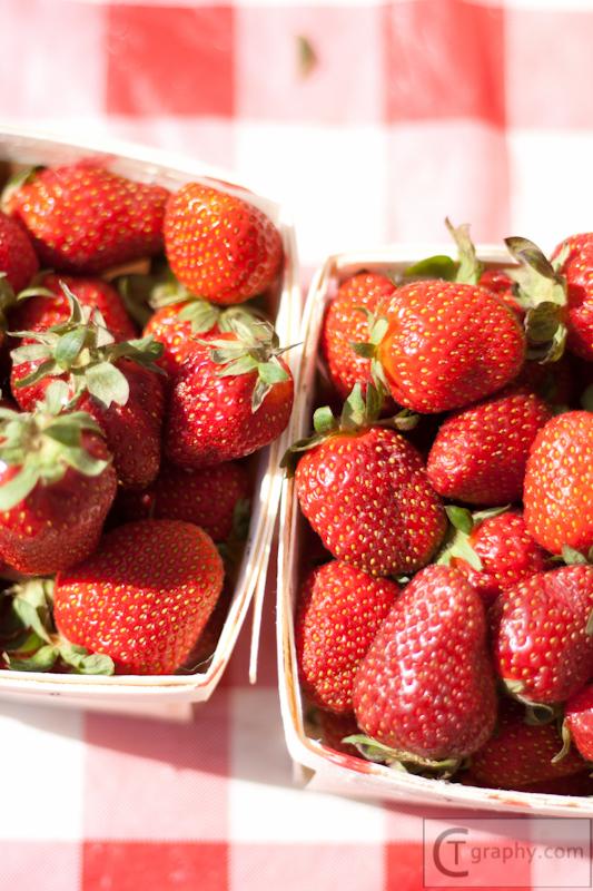 Clintonville Farmers Market 2012 CTgraphy (56 of 60).jpg
