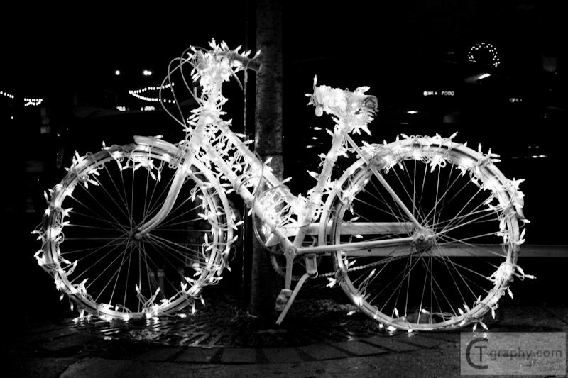 Holiday Hop 2010 LIGHTS (1 of 2).jpg