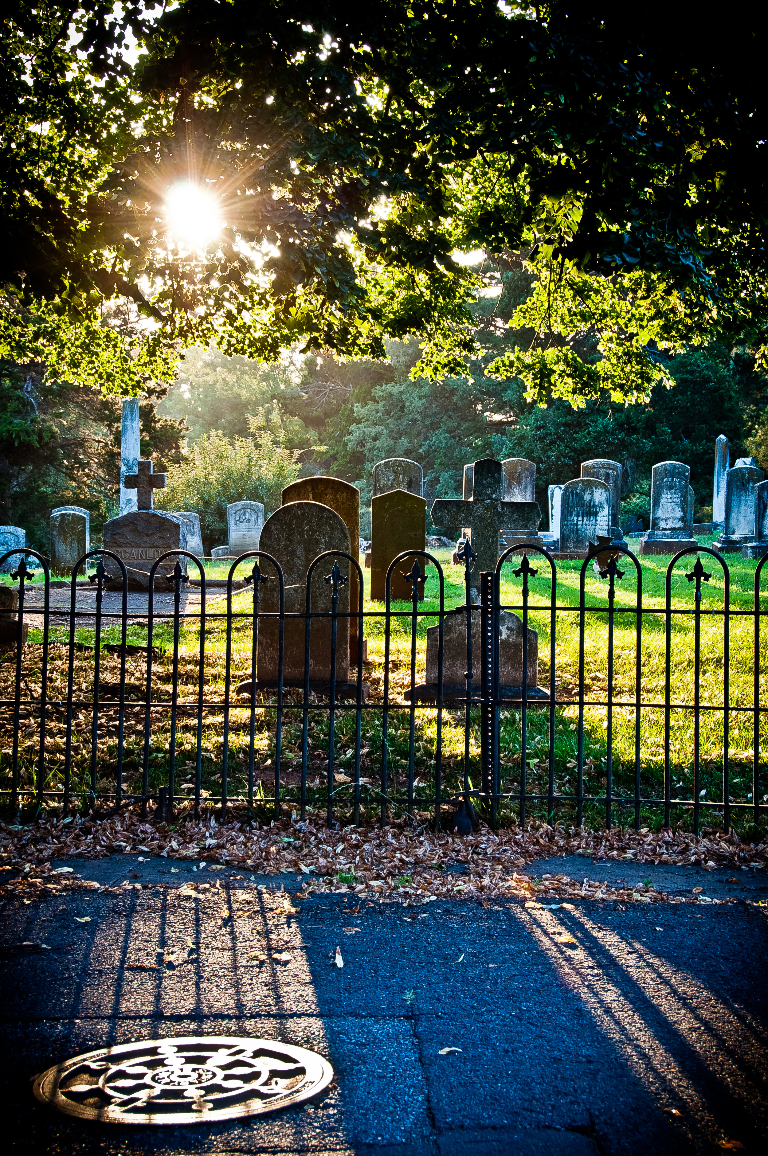 Cemetery at Sunset, the overall winning image of the photowalk - Nikon D90