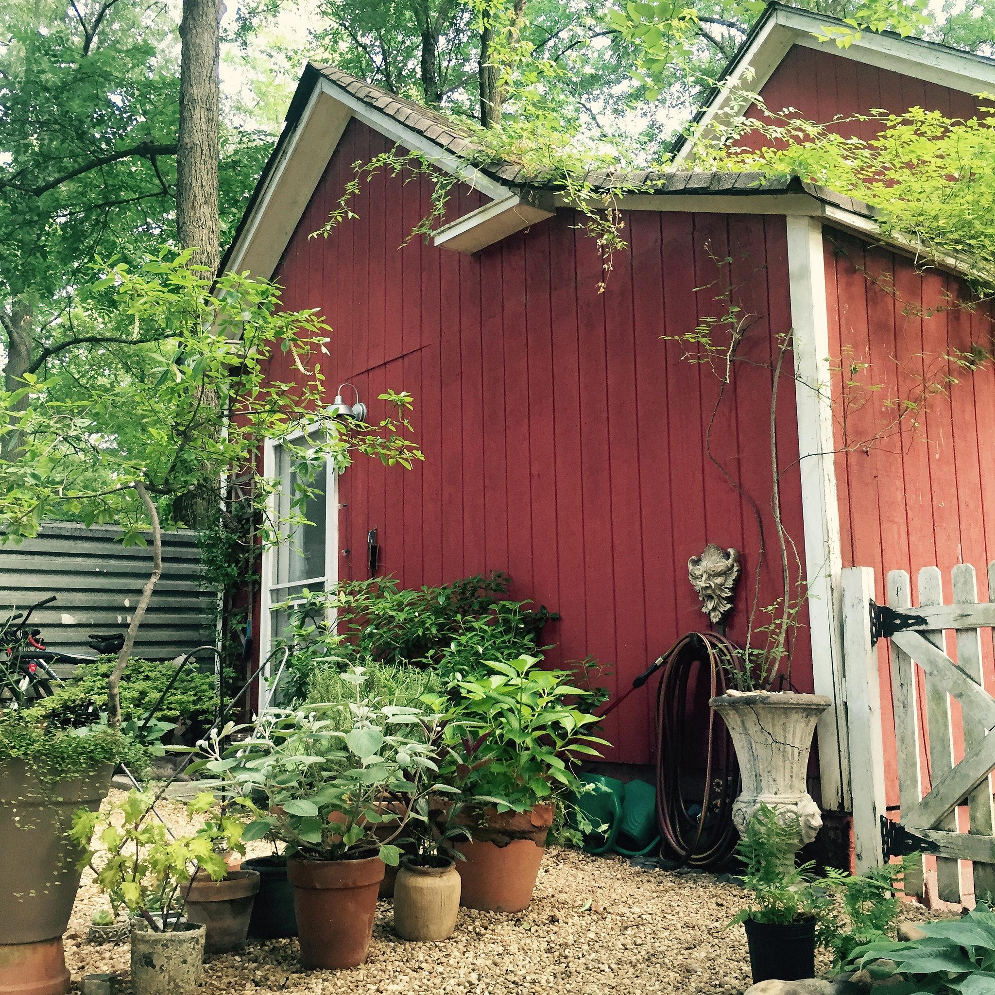 Teri's House