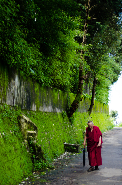A monk walks on the path outside the temple complex