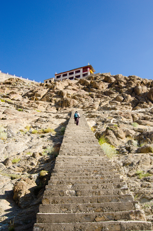 The ladder-like stairs leading to Shanti Stupa