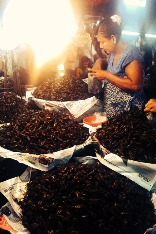 Vendor selling fried insects.