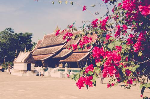 Luang Prabang-44.jpg
