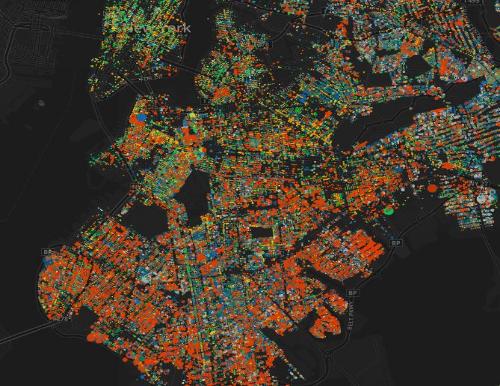 Jill Hubley - Map of NYC Tree Species