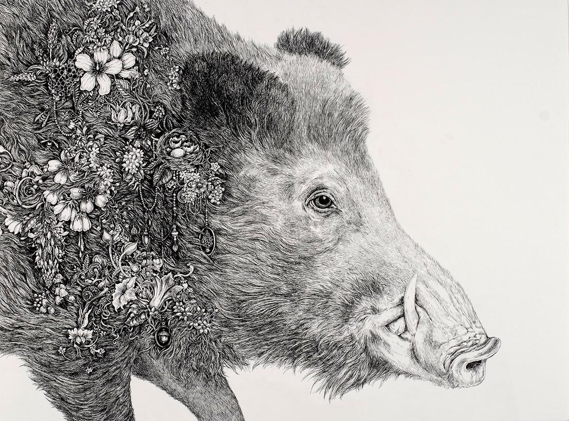 Root (Boar).jpg