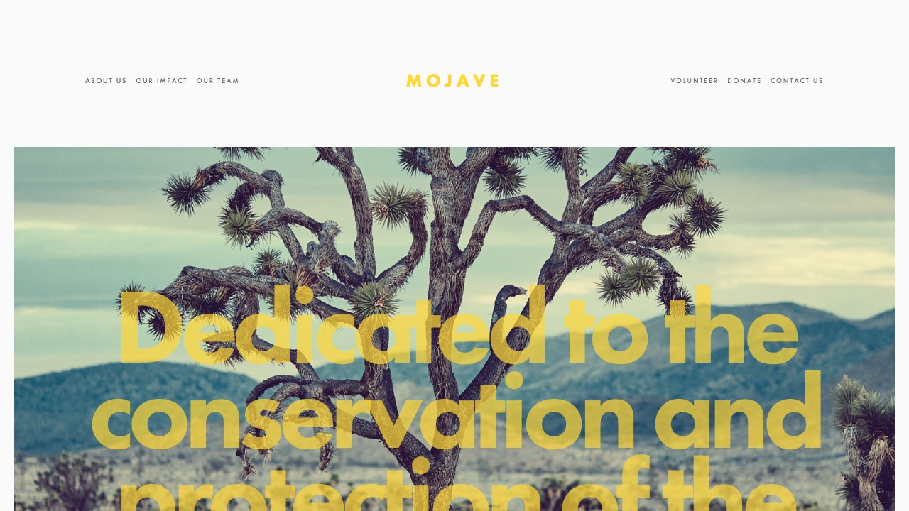 Mojave Brad Good Squarespace Expert Website Designer