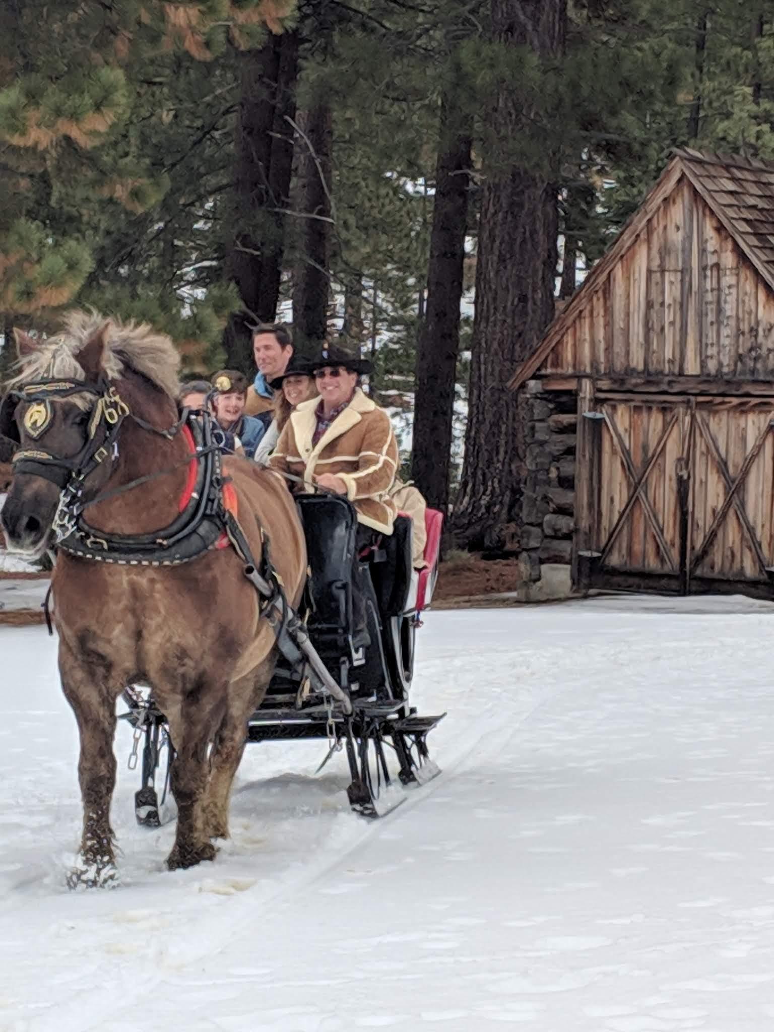 sleigh in snow SLT.jpg