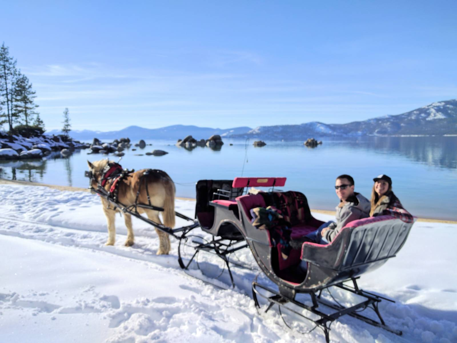 blkred santa sleigh snow.jpg