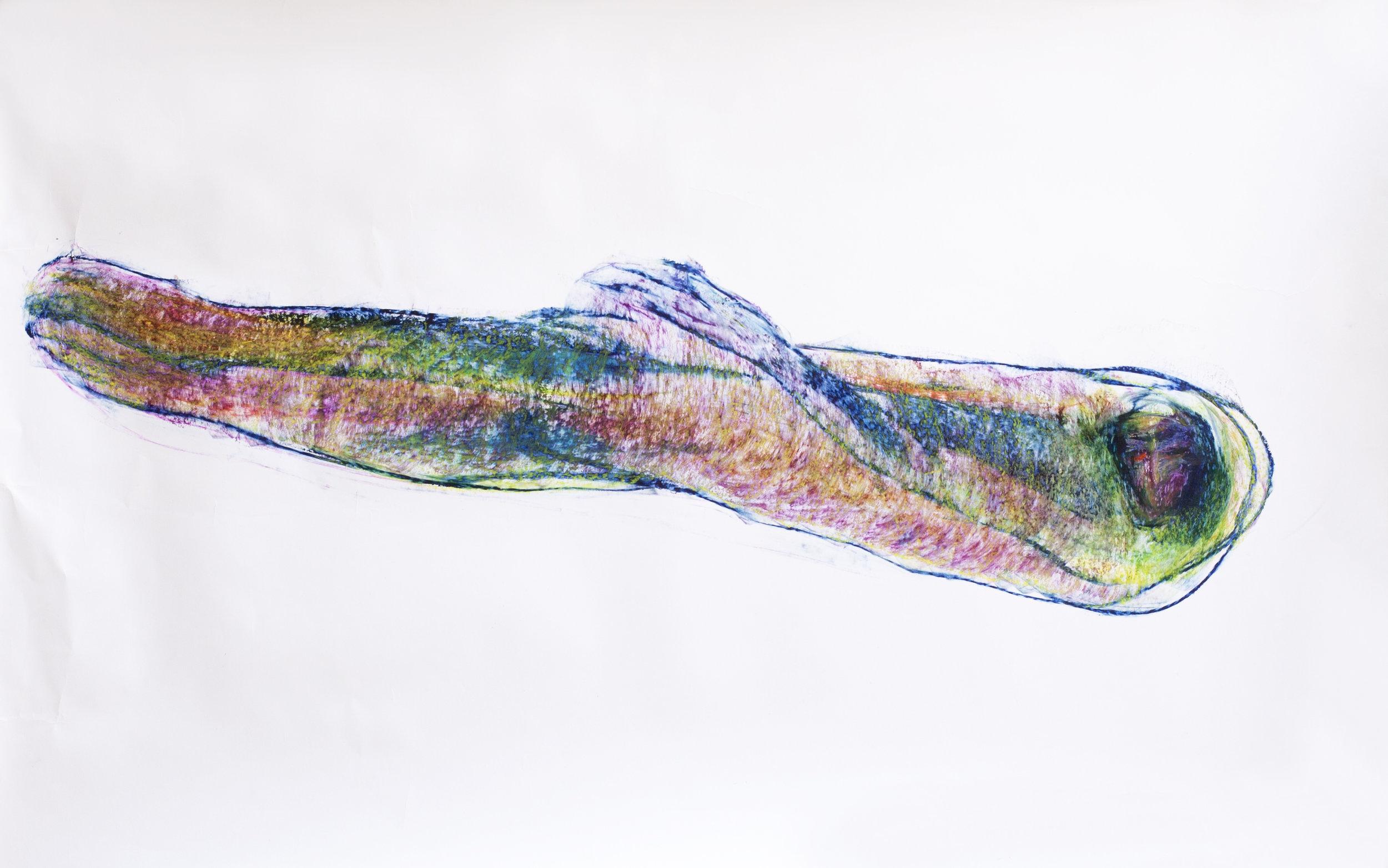Oil Pastel on paper / 150 cm x 100 cm / 2016