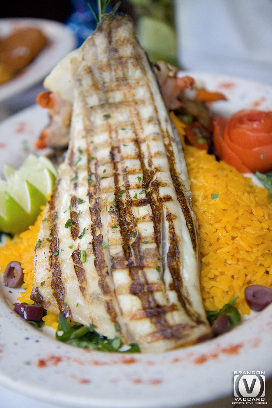 commercial-food-photography-fresh-fish.jpg