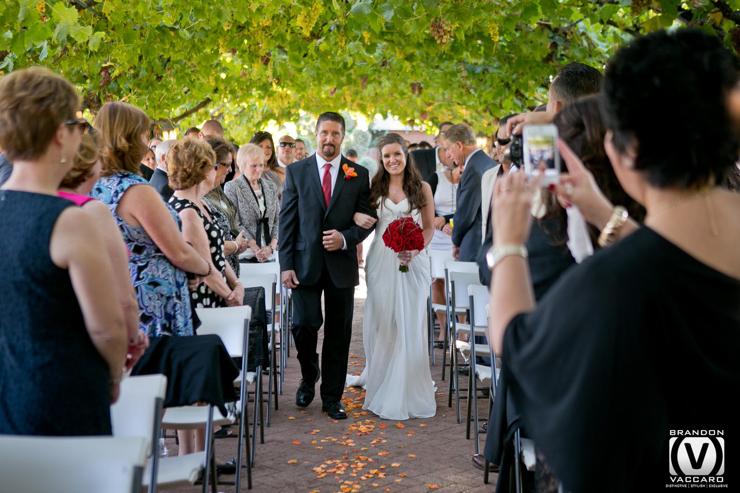 real-wedding-cocannon-vineyard-livermore.jpg