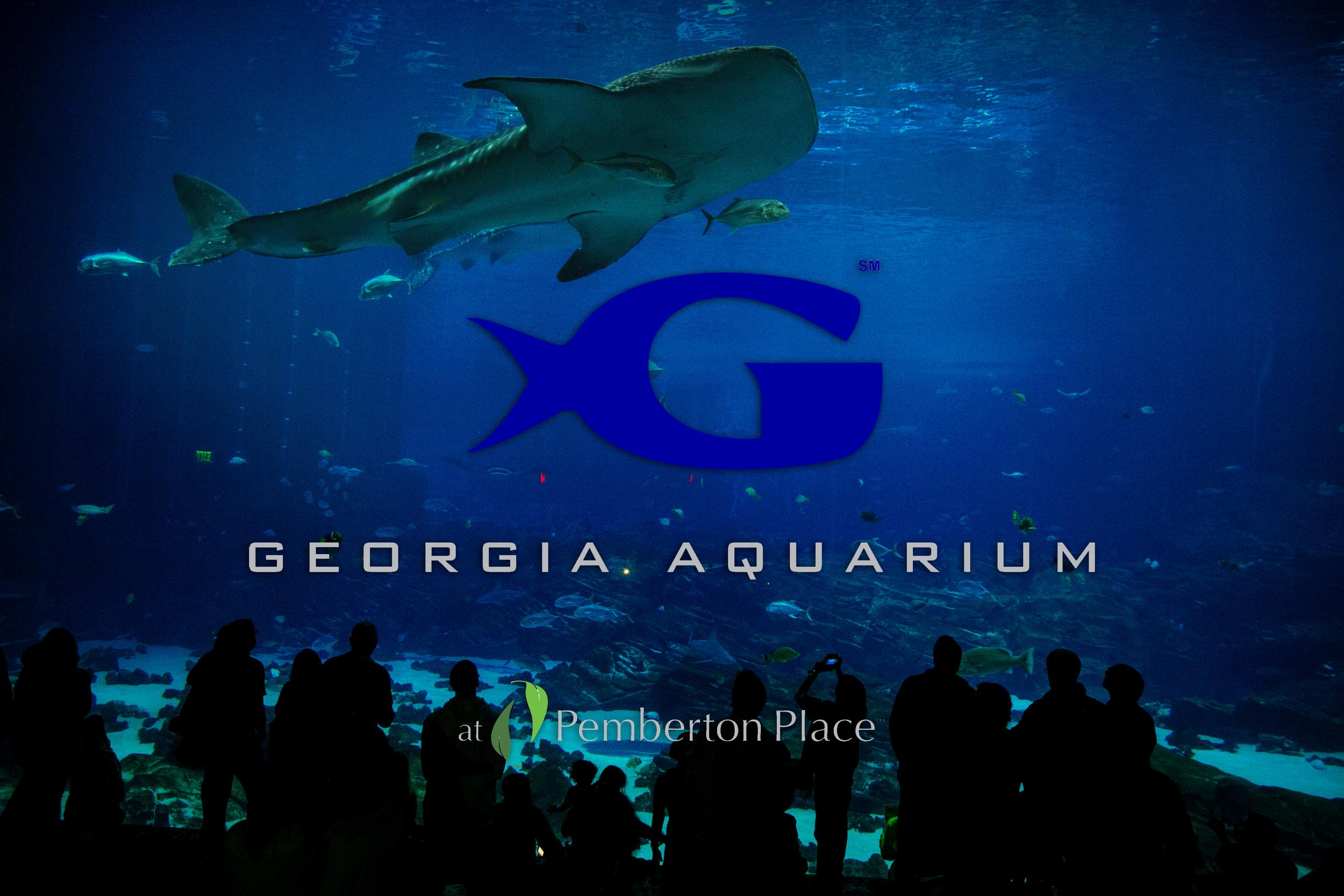 commercial-photography-georgia-aquarium.jpg