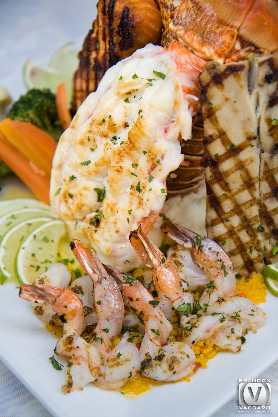 commercial-food-photography-fresh-catch-assorted-fish.jpg