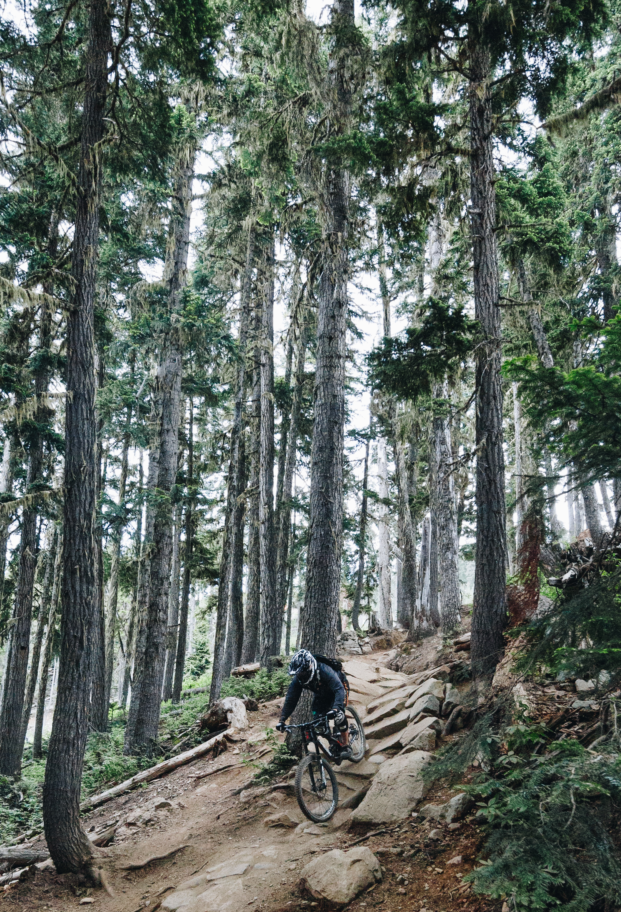 A nice, steep technical section . The photos don't show the speed at which riders navigate the terrain; it's insane.