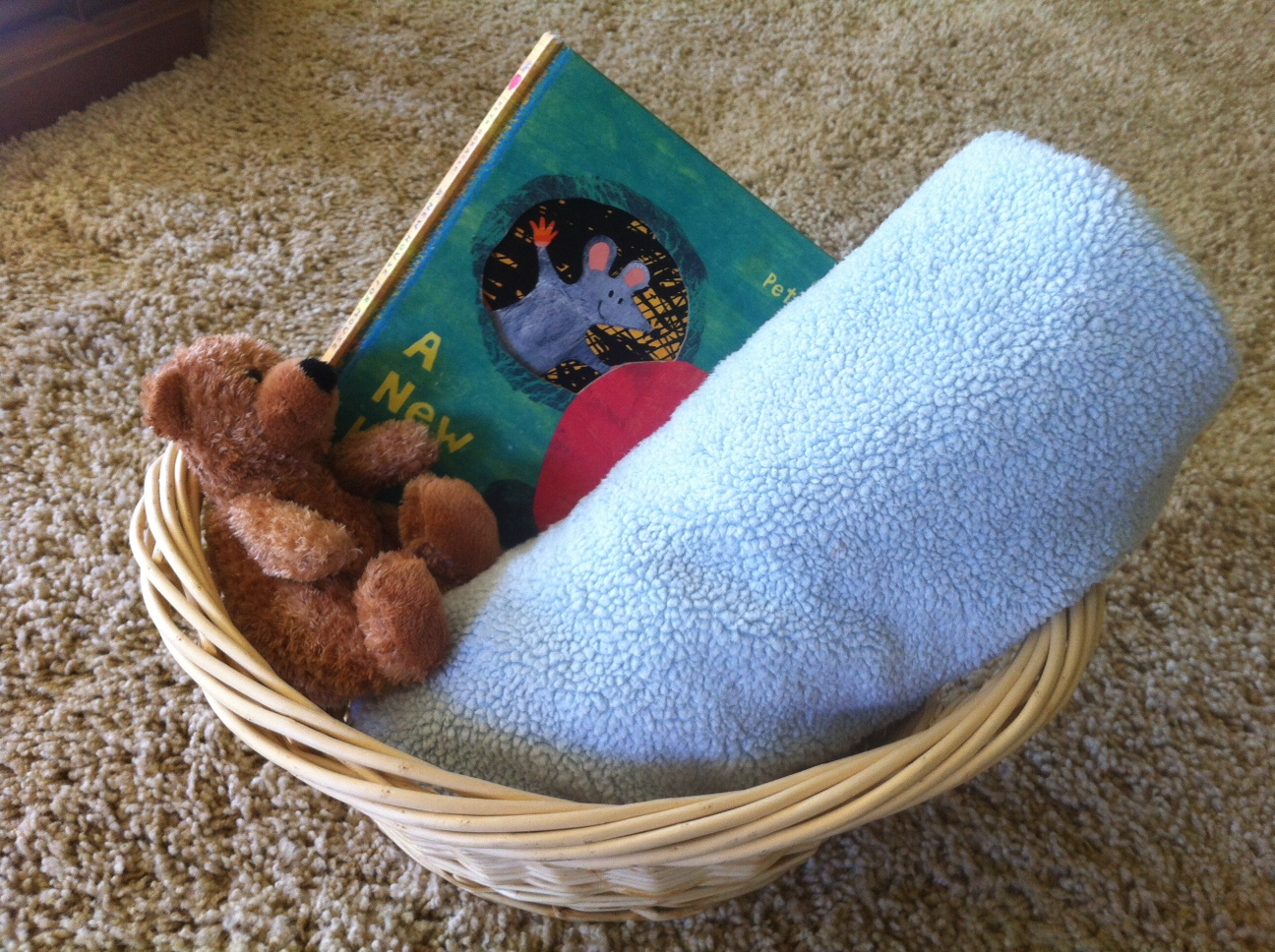 Soothing Baskets are powerful tools to allow your children begin the work of learning self-regulation…  And they buy a little bit of peace during the busy days of parenting.