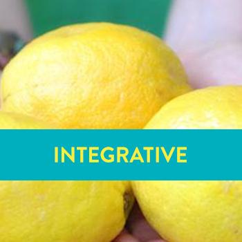 Copy of Integrative Coaching