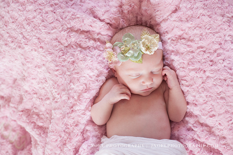 Austin Newborn Photographer 36.jpg