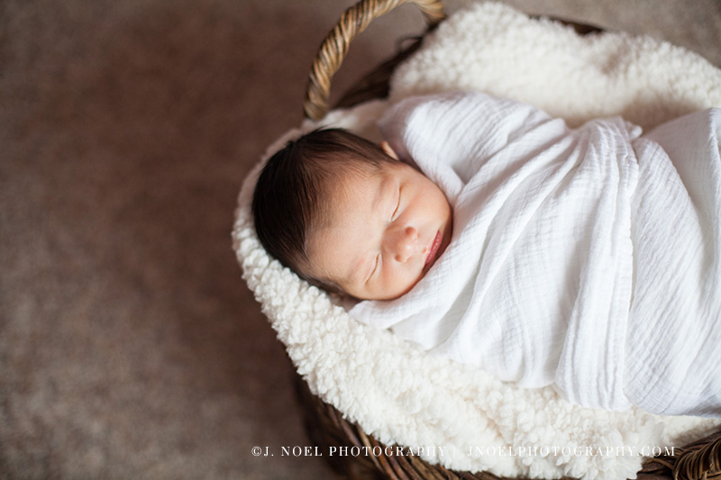 Austin Newborn Photographer13.jpg
