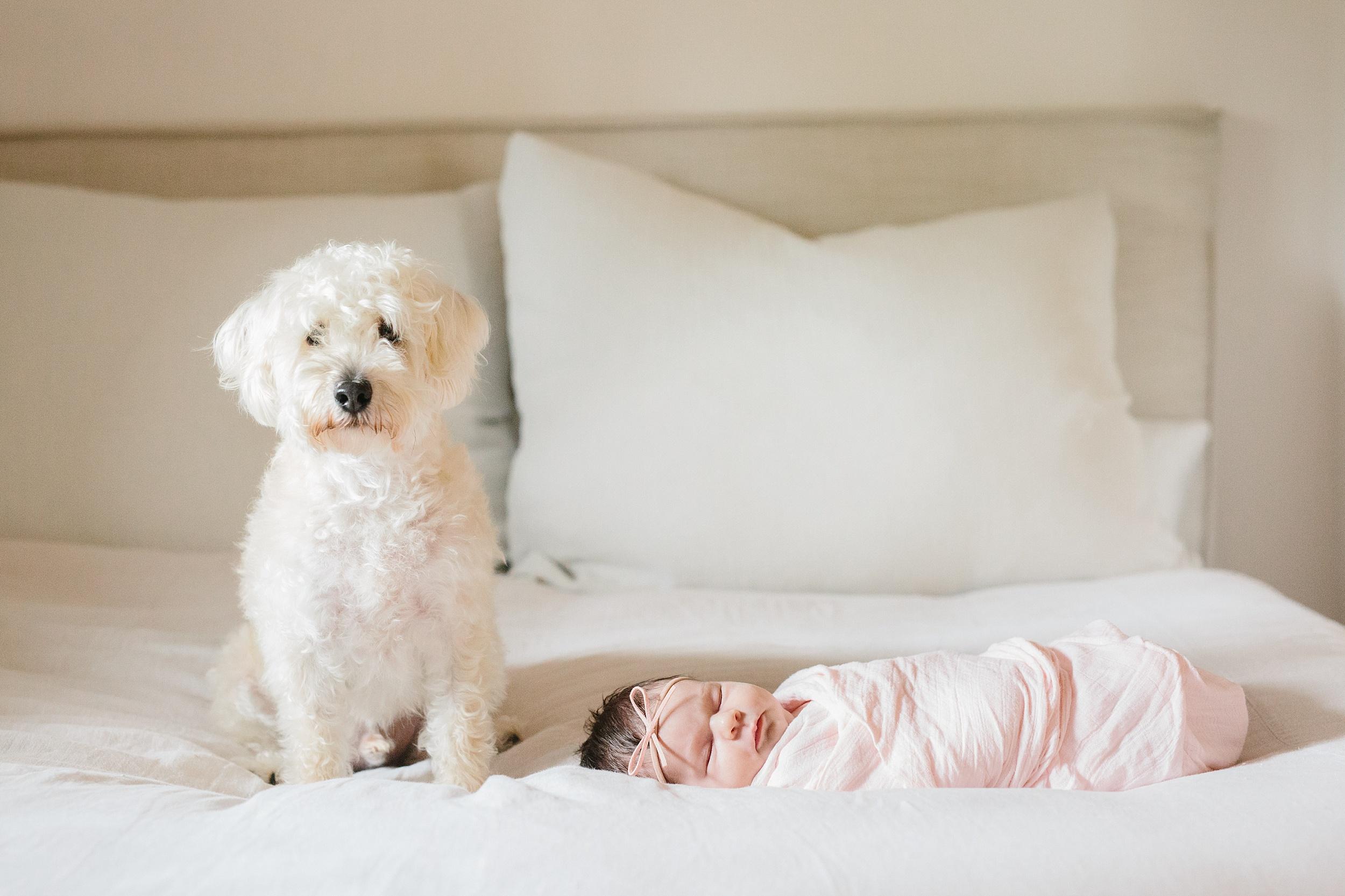 Austin Newborn Photographer 30.jpg