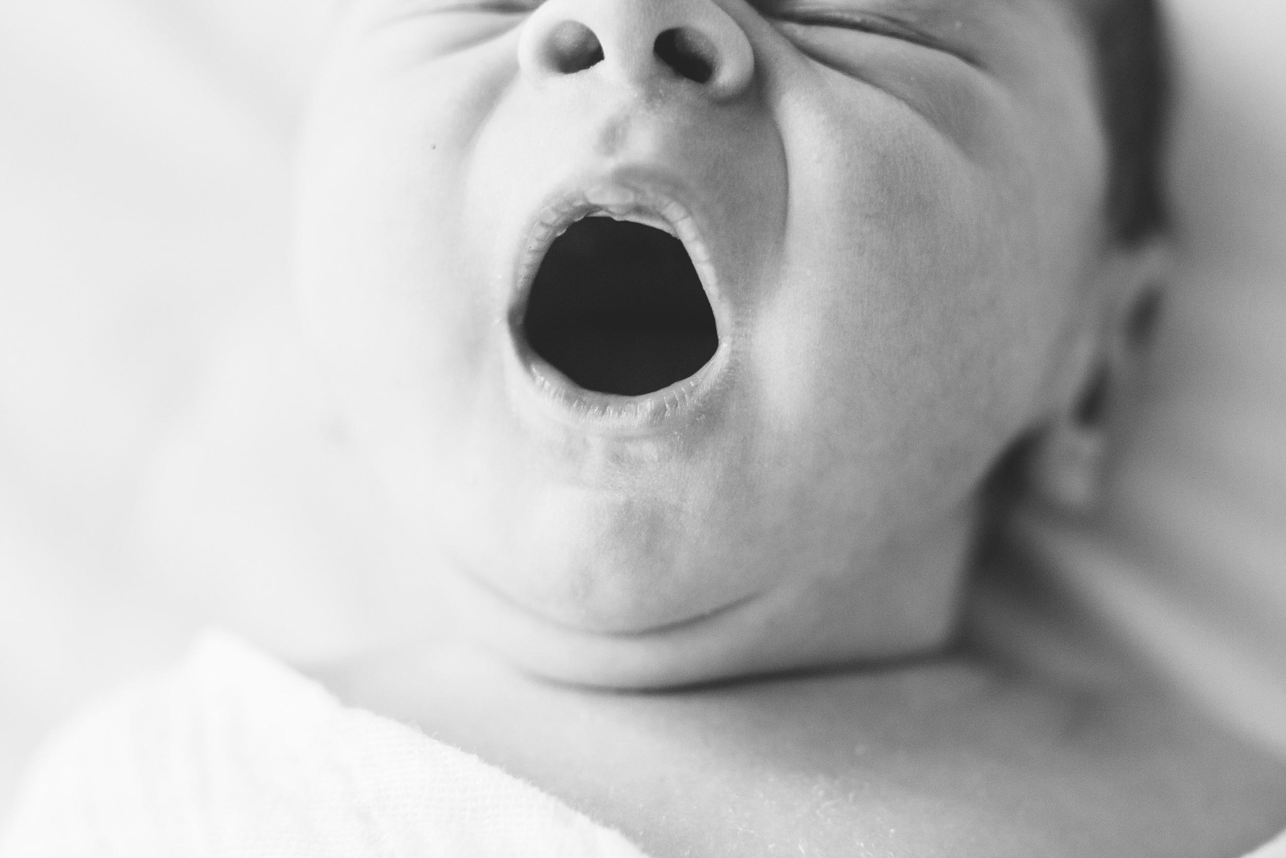 Austin Newborn Photographer 34.jpg