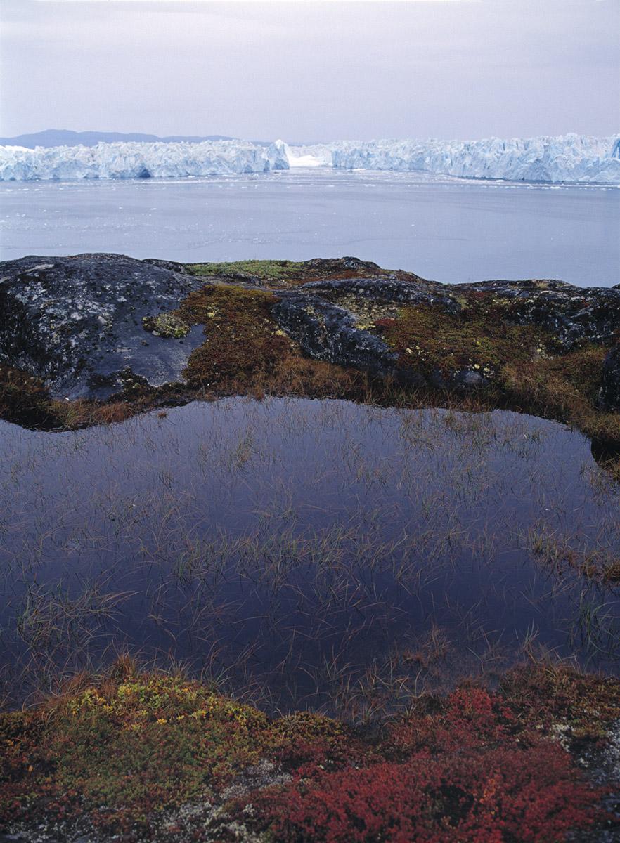 glacial meltpond, Baffin Island
