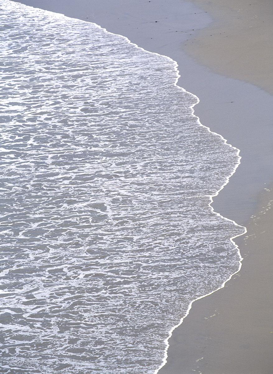 wave lace, Oregon