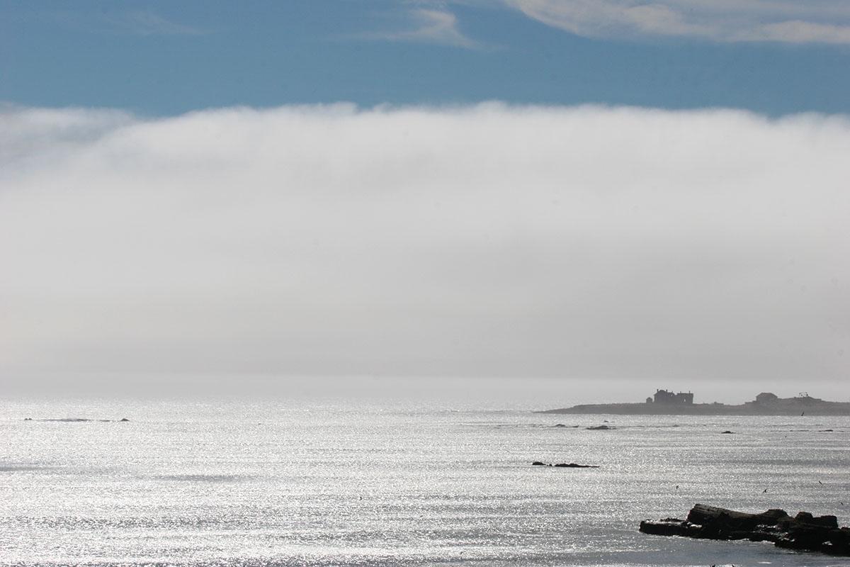 fog bank, Año Nuevo