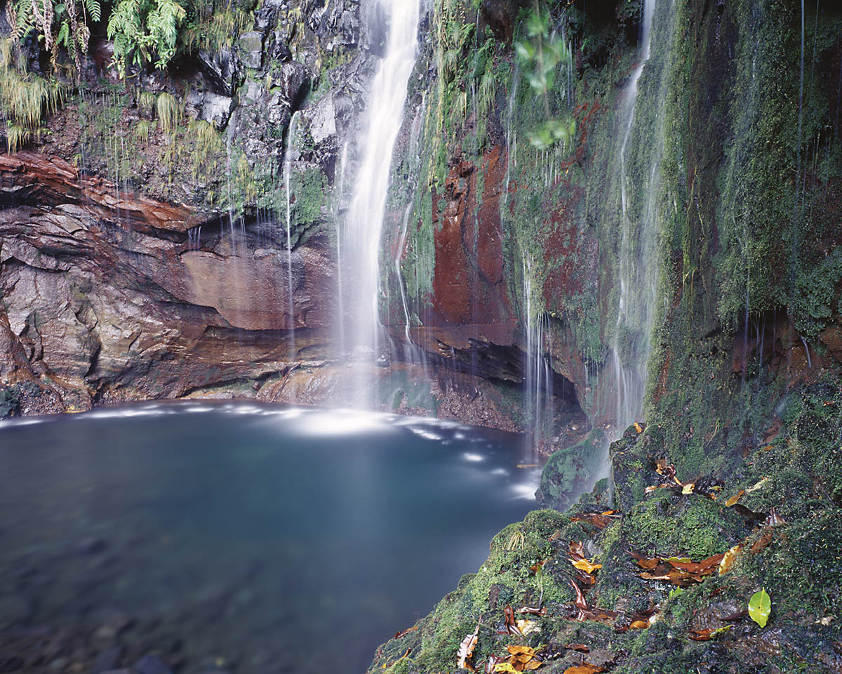 25 Fontes, Madeira