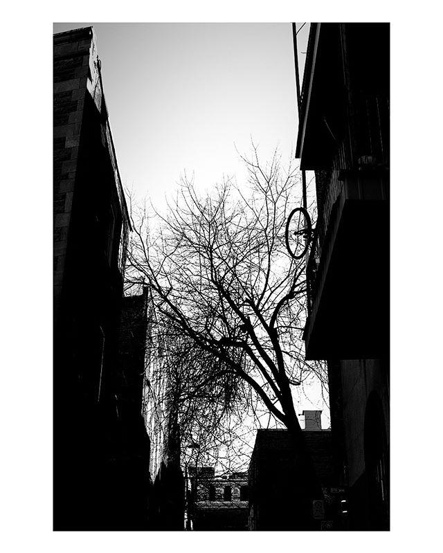 #Montréal #canada #blackandwhite #b&w #bnwphotography #straightfromcamera #nofilter #canon #eosr #rf35mmf18