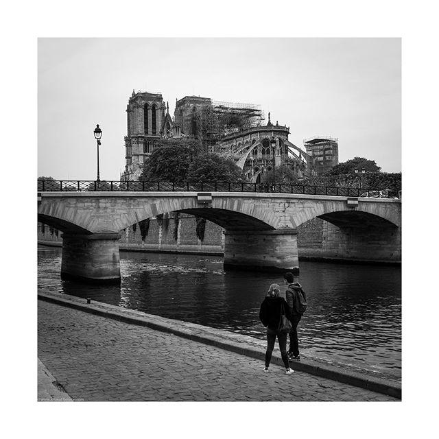 The day after 2/2 #notredame #paris #notredamedeparis #blackandwhite #instablackandwhite