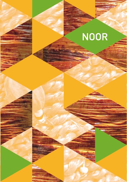 Noor F 1.png