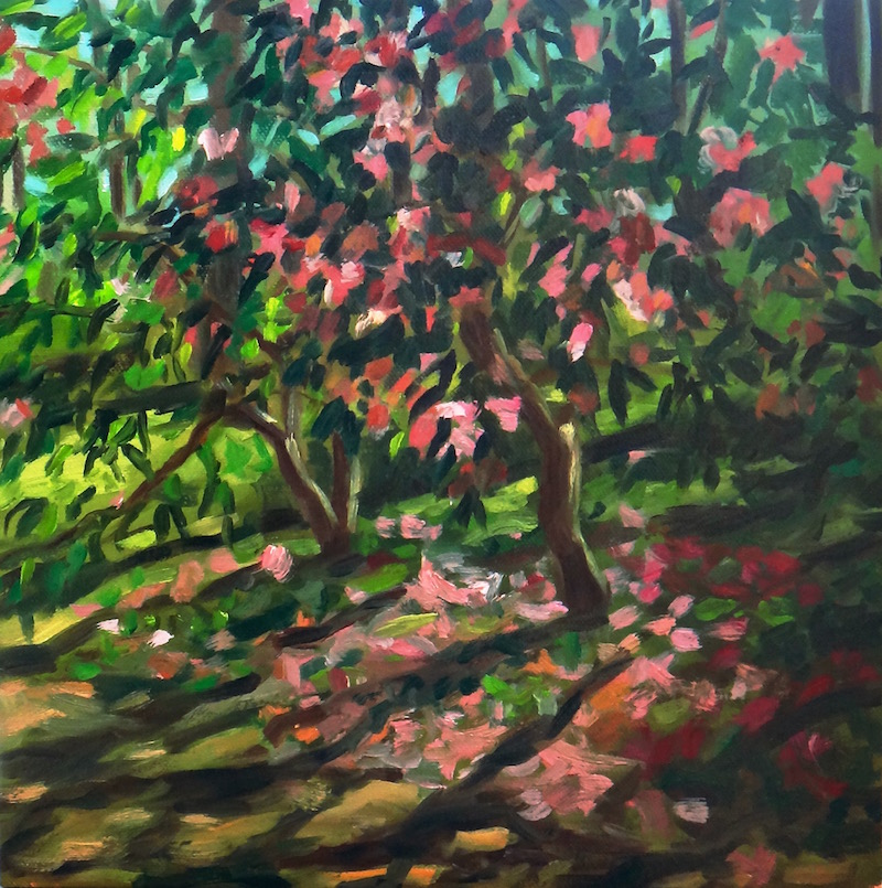 """""""Late Afternoon Camellias""""Oil on 12x12"""" canvas. 2016."""
