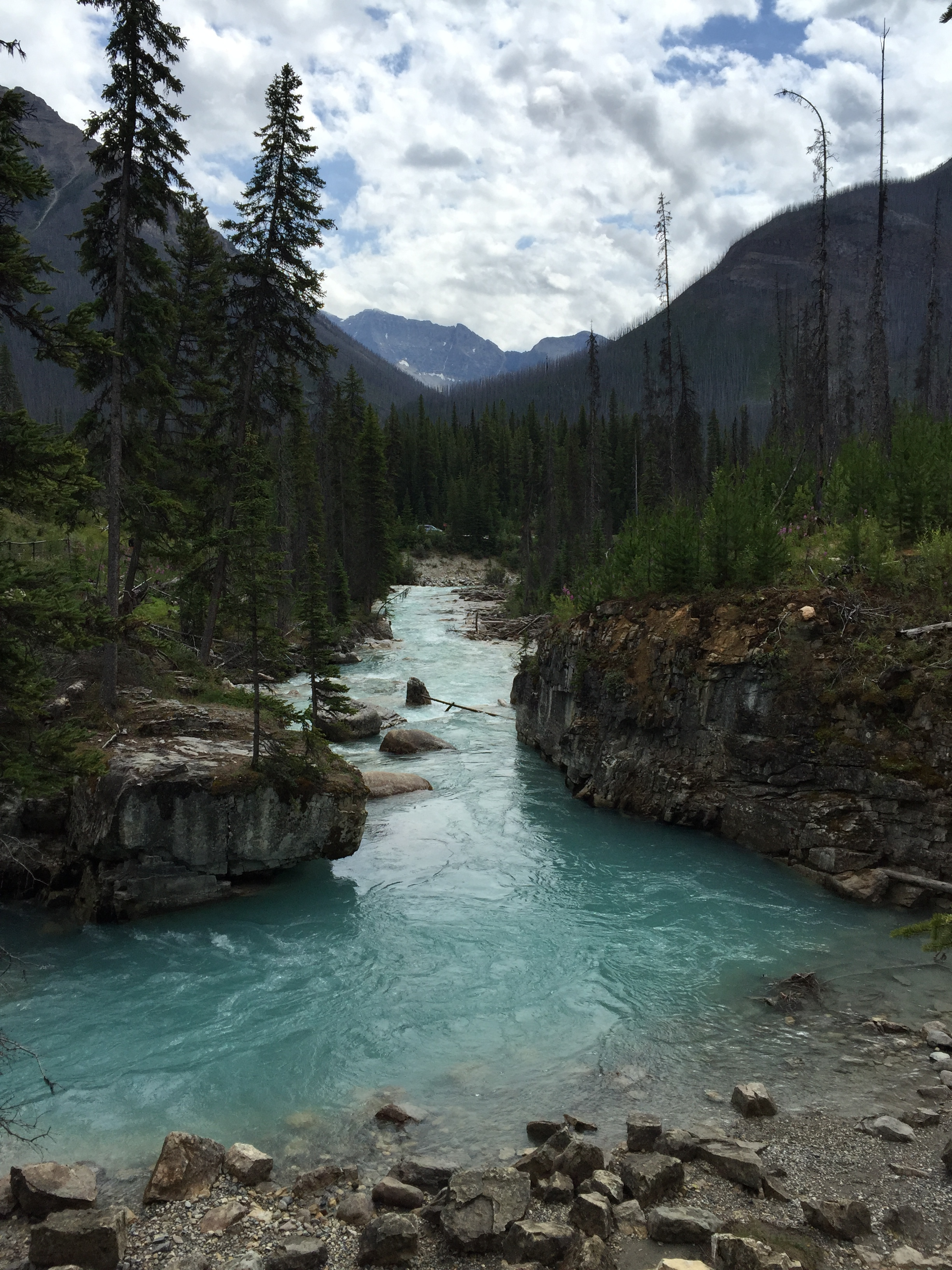 Marble Canyon, Kootenay National Park - iPhone image