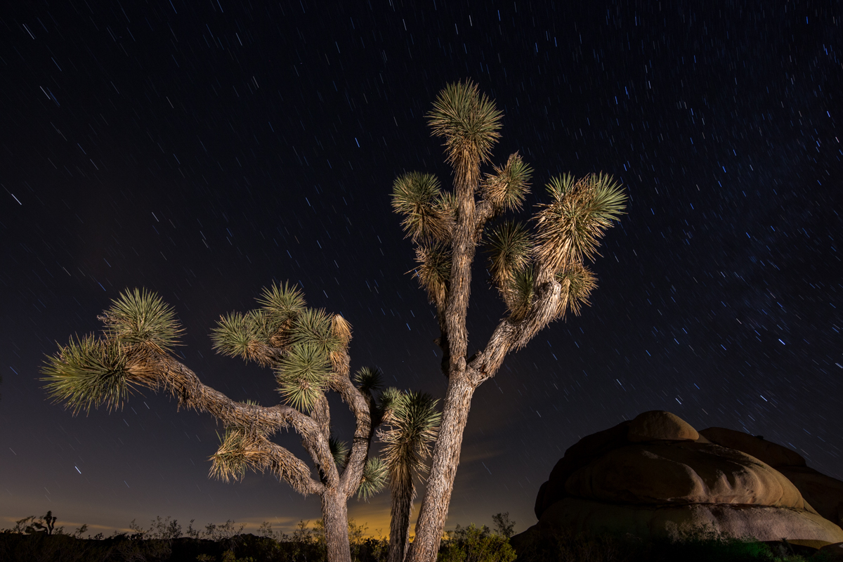 Joshua Tree National Park. Full moon. 4 minutes.