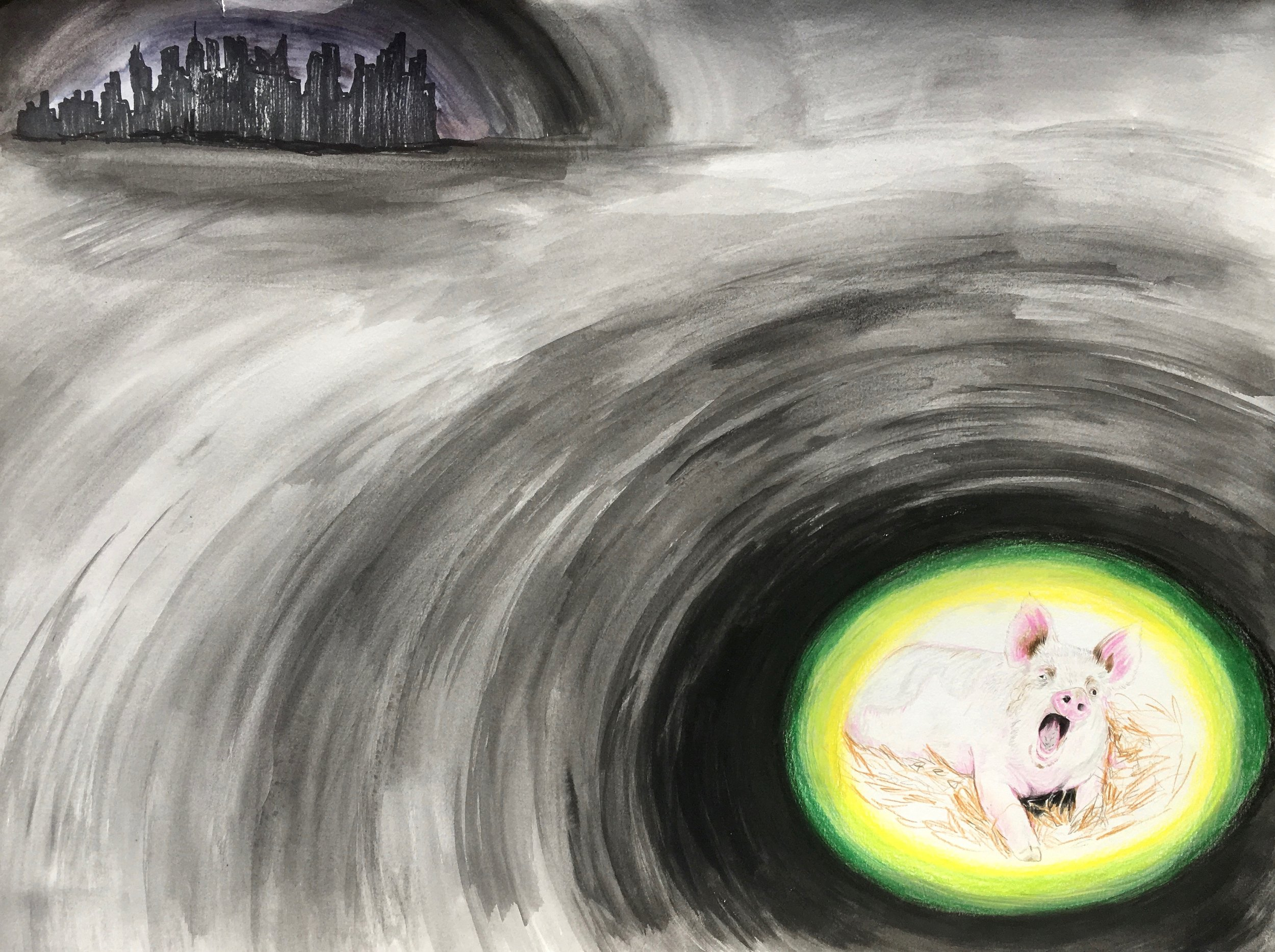 Pig 6.jpeg