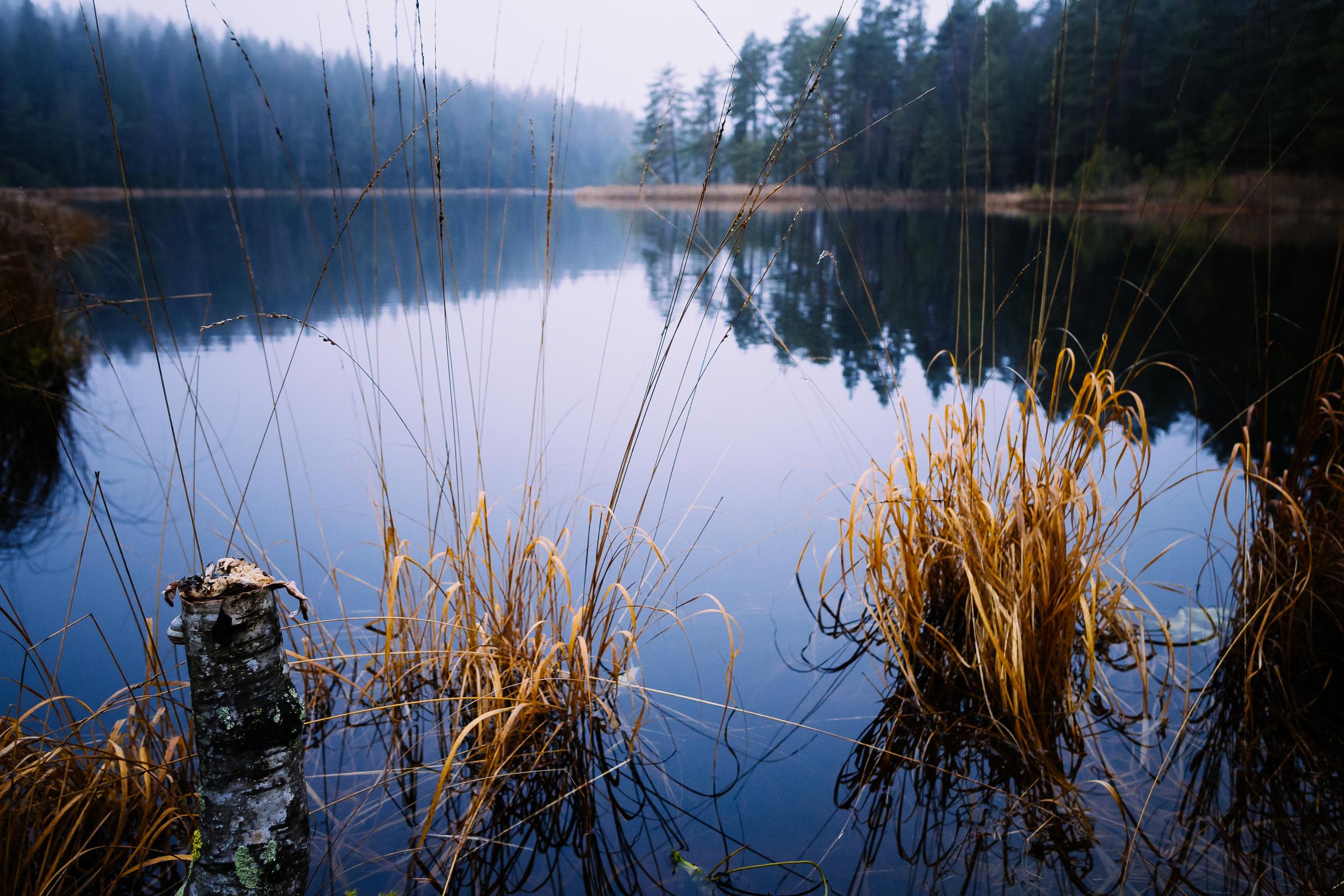 nuuksio-lake-view.jpg