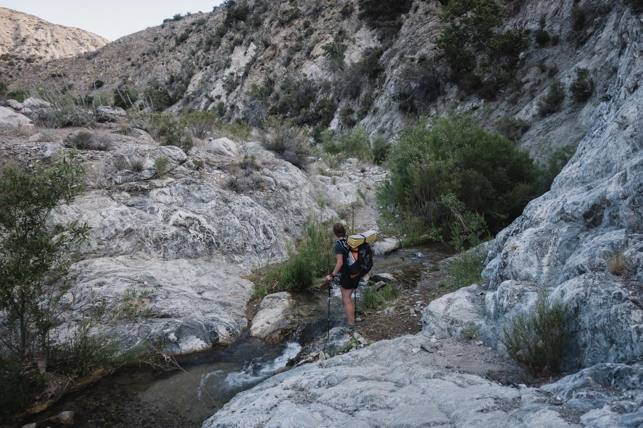 Fyre (Alex) crossing a stream.