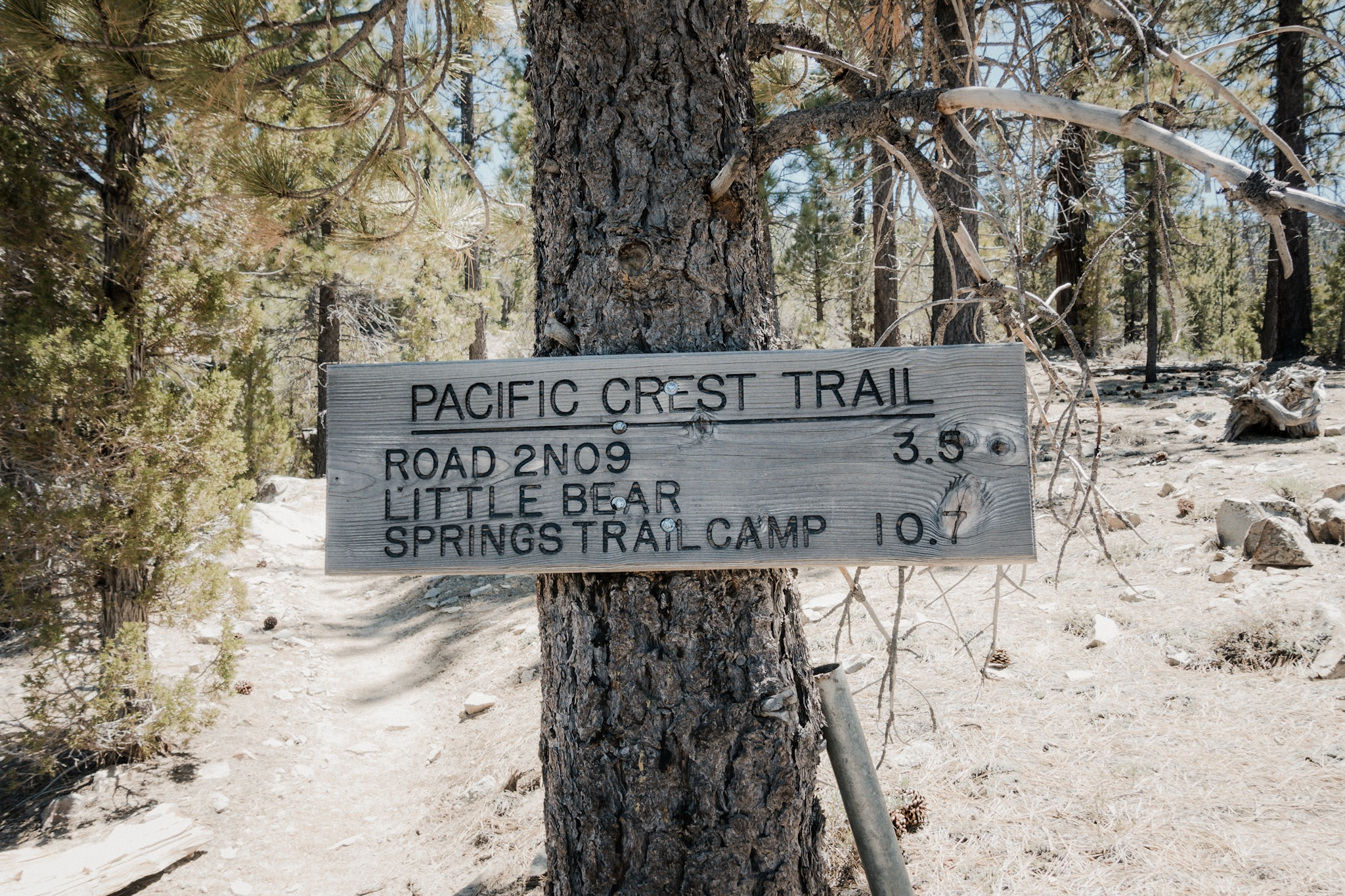 Trail signs.