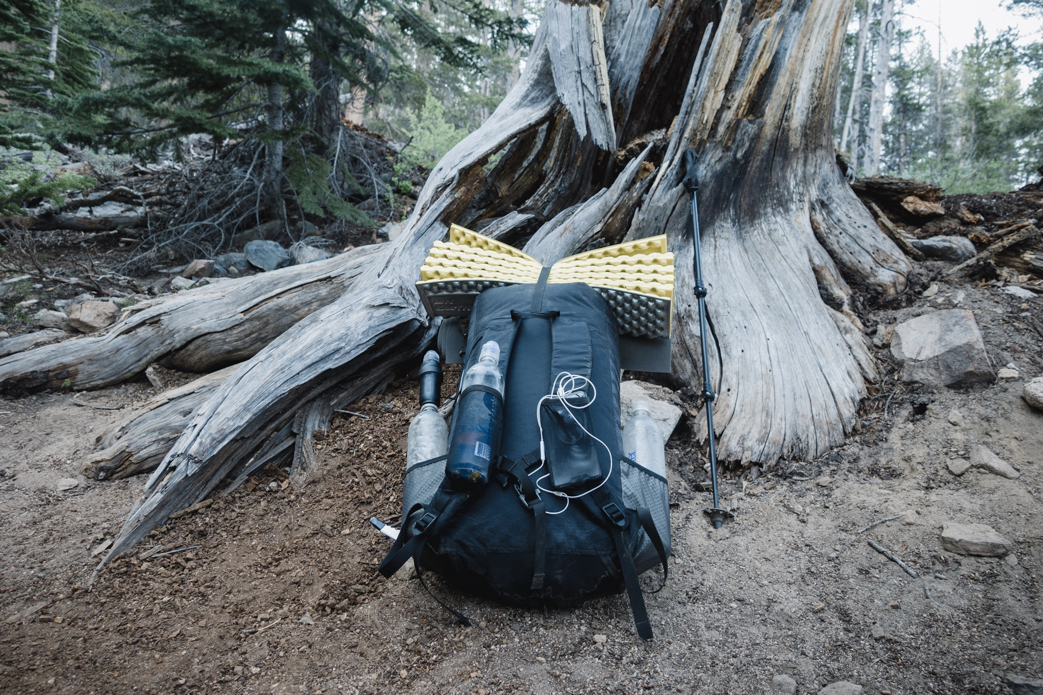 My new Pa'lante Pack with bear canister.