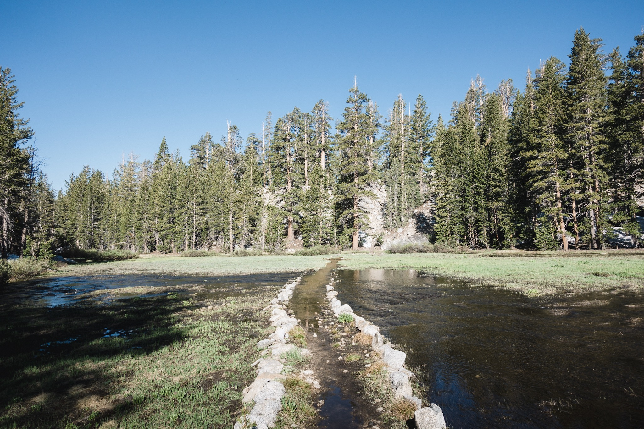 Sometimes the trail is a little moist.