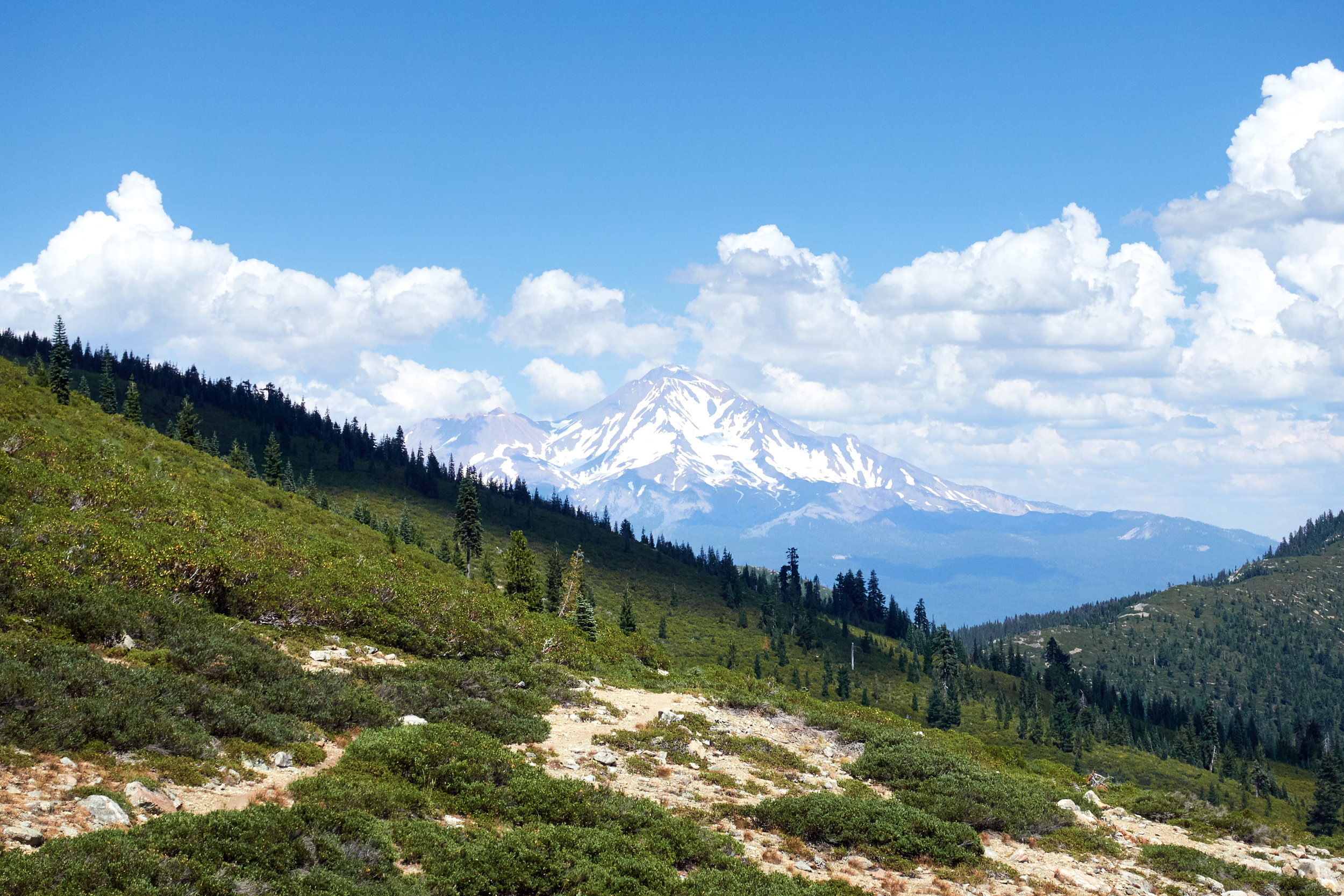 Views of Mt Shasta from the trail.