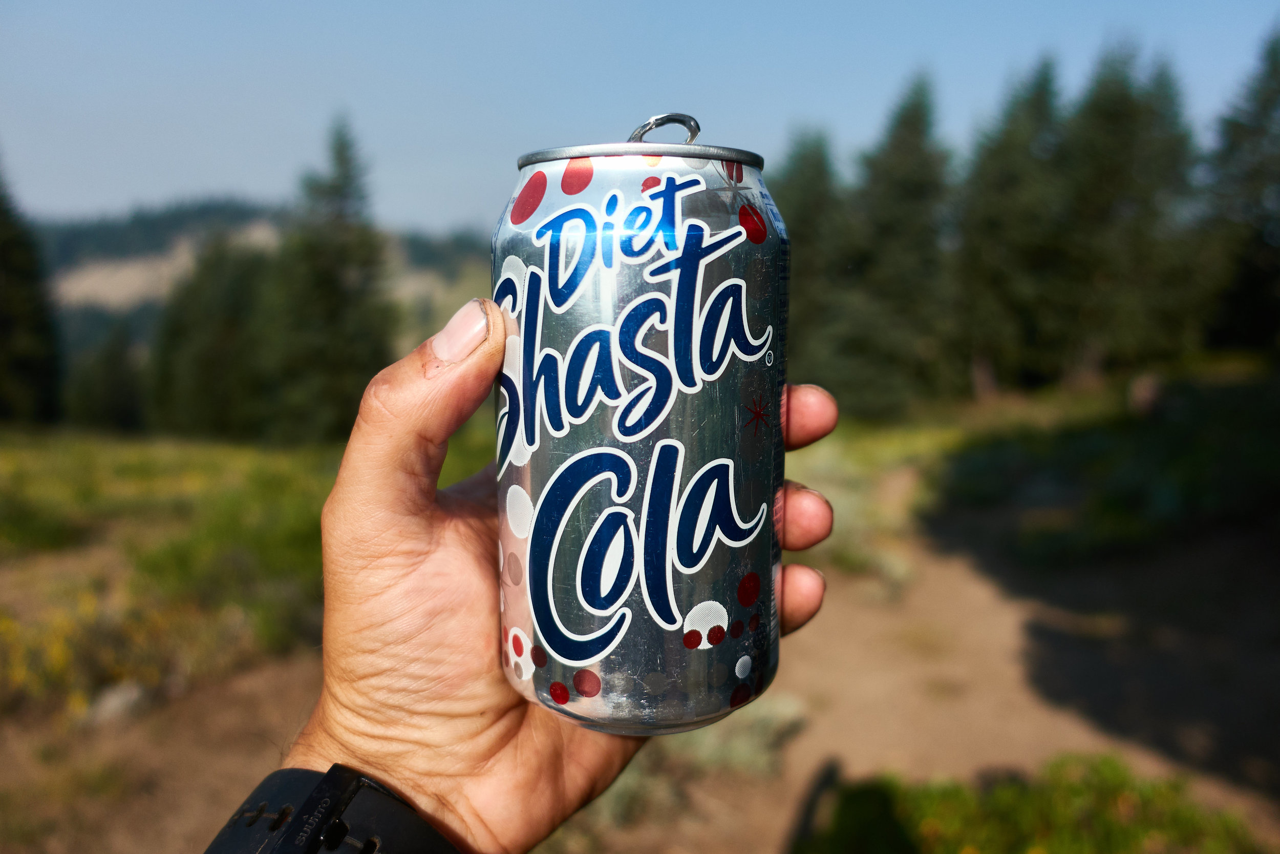 Diet Shasta Cola!