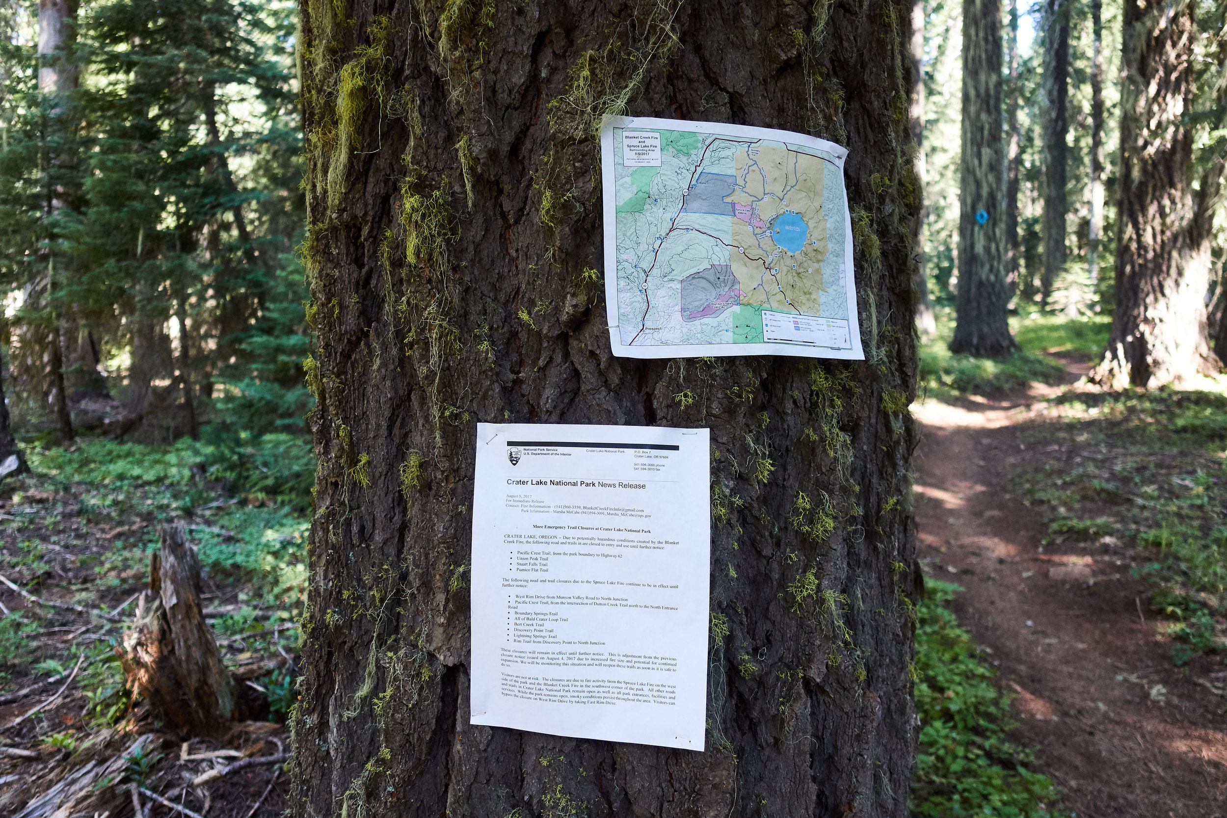 Info about the trail closures ahead.